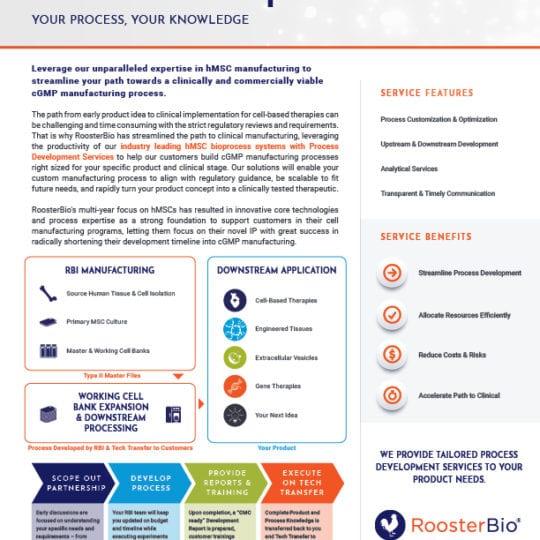 Process Development Services Tech Sheet
